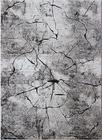 Nowoczesny dywan Miami 0129 V (1)