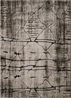 Nowoczesny dywan Miami 0127 V (1)