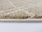 Nowoczesny dywan Poloness 07289A L.BEIGE. Beżowa kolorystyka oraz subtelny wzór podkreślą charakter Twojego pomieszczenia. Profesjonalne wykonanie oraz wysoka jakość, gwarantują długie użytkowanie produktu.