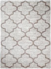 Nowoczesny dywan DELUX 05838A CREAM. Puszysty dywan - modny wzór, marokańska koniczyna w odcieniach kremu podkreśli charakter Twojego pomieszczenia. Profesjonalne wykonanie oraz wysoka jakość, gwarantują długie użytkowanie produktu.